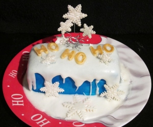 Kim's Christmas Cake 5