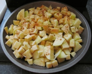 Kim's apple pie filling