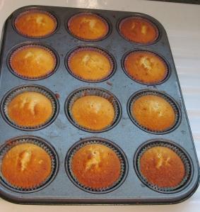 Kim's cupcakes