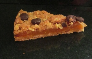 Kim's Apricot & Chocolate Chip Bars